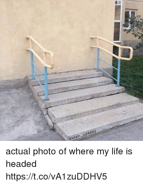 Life, Girl Memes, and Photo: osean speezy actual photo of where my life is headed https://t.co/vA1zuDDHV5
