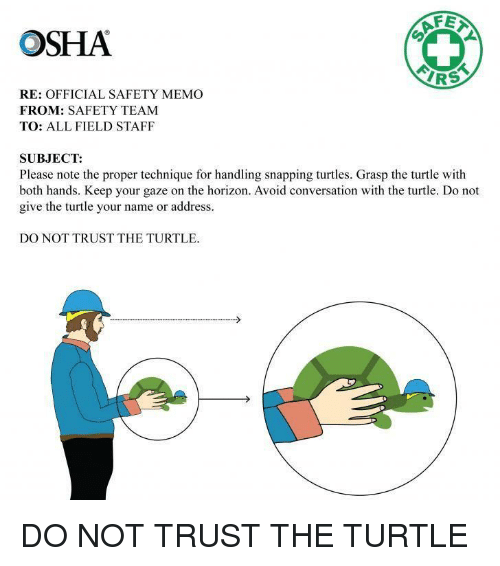 osha: OSHA  AF  IRS  RE: OFFICIAL SAFETY MEMO  FROM: SAFETY TEAM  TO: ALL FIELD STAFF  SUBJECT:  Please note the proper technique for handling snapping turtles. Grasp the turtle with  both hands. Keep your gaze on the horizon. Avoid conversation with the turtle. Do not  give the turtle your name or address.  DO NOT TRUST THE TURTLE DO NOT TRUST THE TURTLE