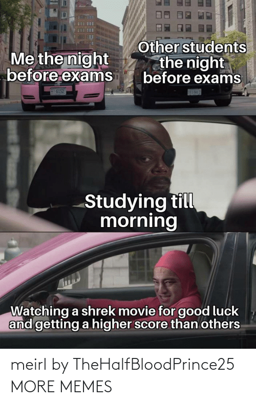 Shrek: Other students  the night  before exams  Me the night  before exams  G152  S83-5H17  Studying till  morning  Watching a shrek movie for good luck  and getting a higher score than others  Plass meirl by TheHalfBloodPrince25 MORE MEMES