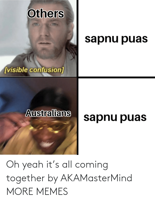Visible: Others  sapnu puas  [visible confusion]  Australians  sapnu puas Oh yeah it's all coming together by AKAMasterMind MORE MEMES