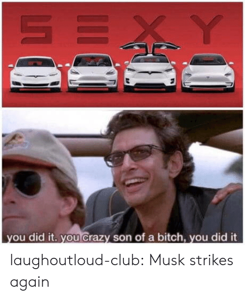 Bitch, Club, and Crazy: ou did it, you crazy son of a bitch, vou did it laughoutloud-club:  Musk strikes again