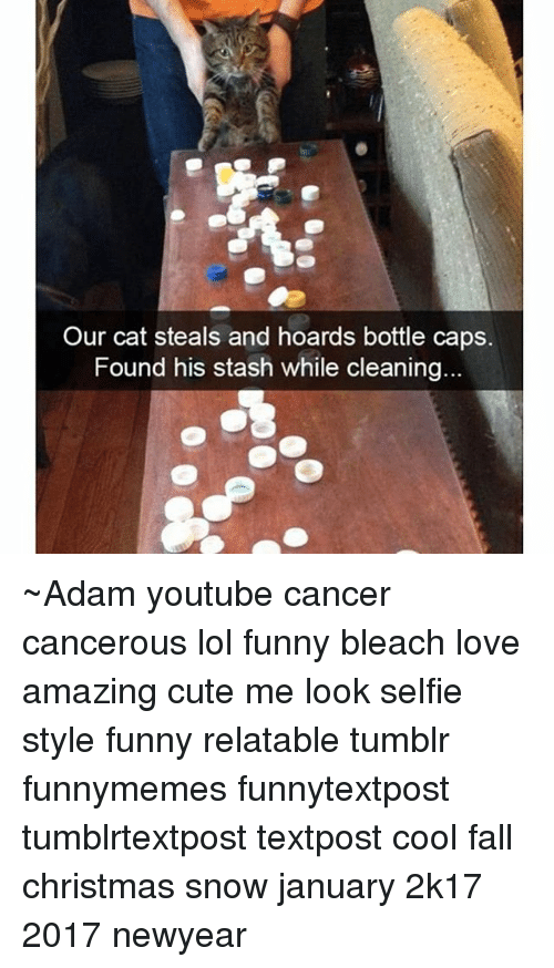 Memes, Tumblr, and Bleach: Our cat steals and hoards bottle caps. Found