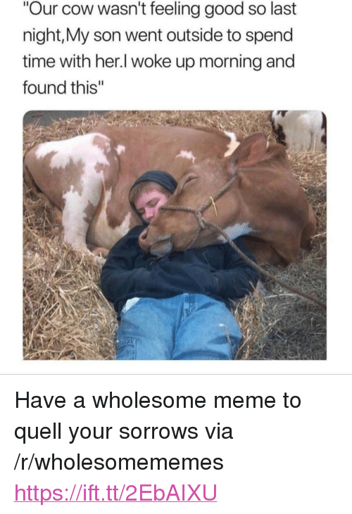 "Meme, Good, and Time: Our cow wasn't feeling good so last  night,My son went outside to spend  time with her.l woke up morning and  found this"" <p>Have a wholesome meme to quell your sorrows via /r/wholesomememes <a href=""https://ift.tt/2EbAIXU"">https://ift.tt/2EbAIXU</a></p>"