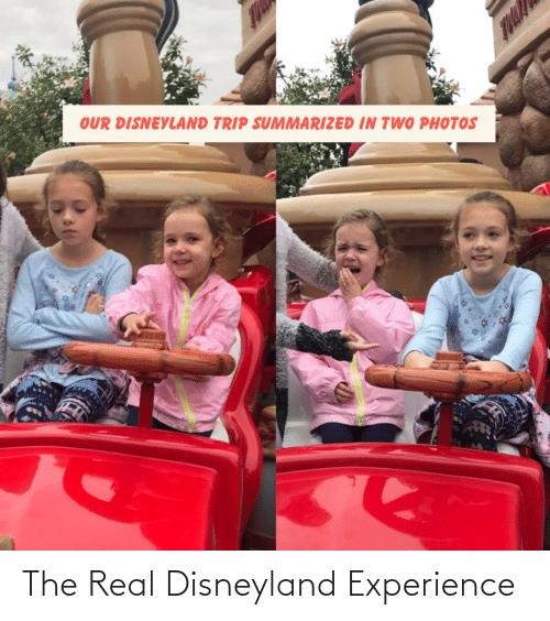 Experience: OUR DISNEYLAND TRIP SUMMARIZED IN TWO PHOTOS The Real Disneyland Experience
