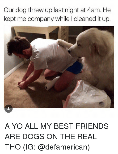 Kepted: Our dog threw up last night at 4am. He  kept me company while l cleaned it up. A YO ALL MY BEST FRIENDS ARE DOGS ON THE REAL THO (IG: @defamerican)