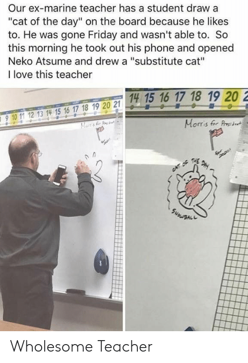 "Friday, Love, and Phone: Our ex-marine teacher has a student draw a  ""cat of the day"" on the board because he likes  to. He was gone Friday and wasn't able to. So  this morning he took out his phone and opened  Neko Atsume and drew a ""substitute cat""  I love this teacher  14 15 16 17 18 19 20 2  15 1  910 11 12 13 14 15 16 17 18 19 20 2  910 1 12 13 14 15 16 17 18 19 20 21  Morris fer Prst Wholesome Teacher"