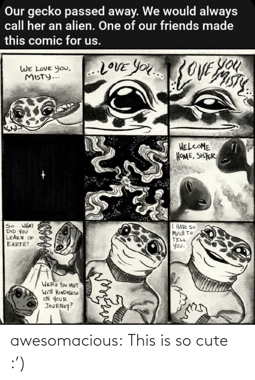 Kindness: Our gecko passed away. We would always  call her an alien. One of our friends made  this comic for us.  You  20VE YOU3OVE  WE LOVE you,..LOVE YOu  WE LOVE You,  MISTY...  HELCOME  HOME, SISTER  So... WHAT  DID YOU  LEARN OF  EARTH?  I HAVE SO  MucH TO  TELL  You.  WERE YOU MET  WITH KINDNESS  ON YOUR  JOURNEY? awesomacious:  This is so cute :')
