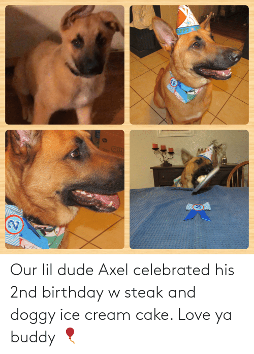Celebrated: Our lil dude Axel celebrated his 2nd birthday w steak and doggy ice cream cake. Love ya buddy 🎈