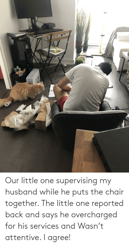 attentive: Our little one supervising my husband while he puts the chair together. The little one reported back and says he overcharged for his services and Wasn't attentive. I agree!