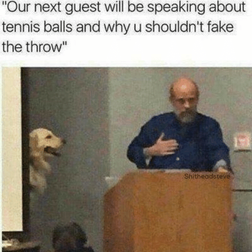 """Fake, Tennis, and Next: Our next guest will be speaking about  tennis balls and why u shouldn't fake  the throw""""  Shitheadsteve"""