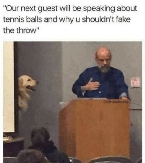 """Fake, Tennis, and Next: """"Our next guest will be speaking about  tennis balls and why u shouldn't fake  the throw""""  Shitheadsteve"""