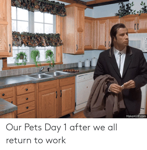 Return: Our Pets Day 1 after we all return to work