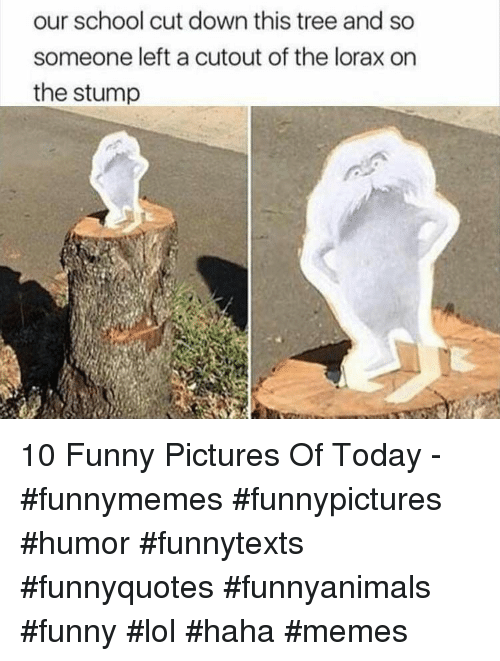 Funny, Lol, and Memes: our school cut down this tree and so  someone left a cutout of the lorax on  the stump 10 Funny Pictures Of Today - #funnymemes #funnypictures #humor #funnytexts #funnyquotes #funnyanimals #funny #lol #haha #memes
