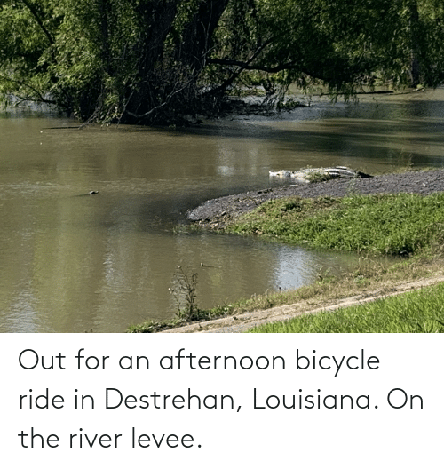 river: Out for an afternoon bicycle ride in Destrehan, Louisiana. On the river levee.