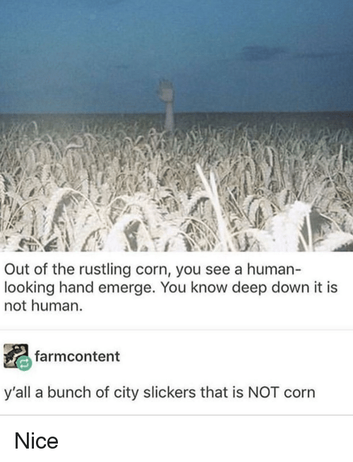 Rustling: Out of the rustling corn, you see a human-  looking hand emerge. You know deep down it is  not human.  farmcontent  y'all a bunch of city slickers that is NOT corn Nice