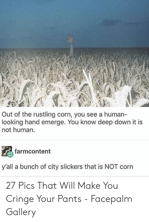 Facepalm, City Slickers, and Human: Out of the rustling corn, you see a human-  looking hand emerge. You know deep down it is  not human.  farmcontent  y'all a bunch of city slickers that is NOT corn 27 Pics That Will Make You Cringe Your Pants - Facepalm Gallery