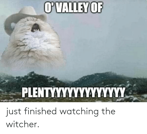 Imgflip Com: O'VALLEY OF  PIENTMANΚΝΑΛΚΑΑΑ  Imgflip.com just finished watching the witcher.