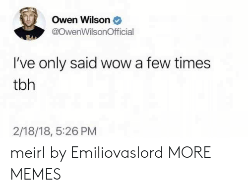 Ives: Owen Wilson  @OwenWilsonOfficial  I've only said wow a few times  tbh  2/18/18, 5:26 PM meirl by Emiliovaslord MORE MEMES