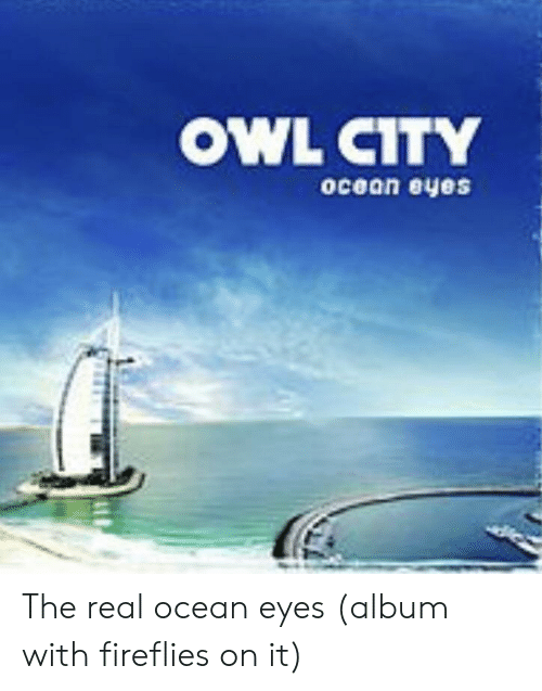 Ocean, The Real, and Owl City: OWL CITY  ocean eyes  (e The real ocean eyes (album with fireflies on it)