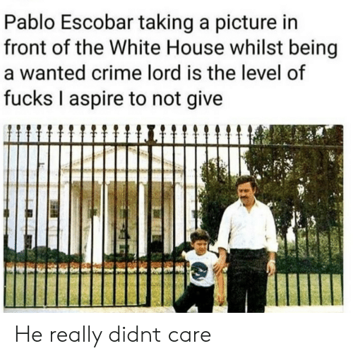 Taking A Picture: Pablo Escobar taking a picture in  front of the White House whilst being  a wanted crime lord is the level of  fucks I aspire to not give He really didnt care