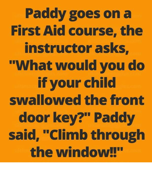 "Memes, Asks, and 🤖: Paddy goes on a  First Aid course, the  instructor asks  What would you do  if your child  swallowed the front  door key?"" Paddy  said, ""Climb through  the window!!"""