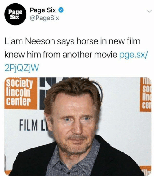 Cel: Page  Six  Page Six  @PageSix  Liam Neeson says horse in new film  knew him from another movie pge.sx/  2PjQZW  society  lincoln  center  SO  cel