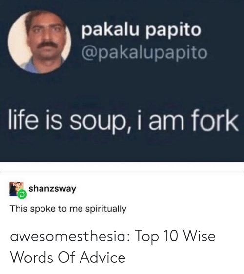 papito: pakalu papito  @pakalupapito  life is soup, i am fork  shanzsway  This spoke to me spiritually awesomesthesia:  Top 10 Wise Words Of Advice