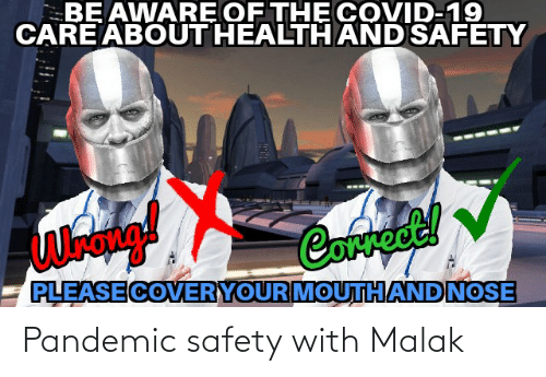 Safety: Pandemic safety with Malak