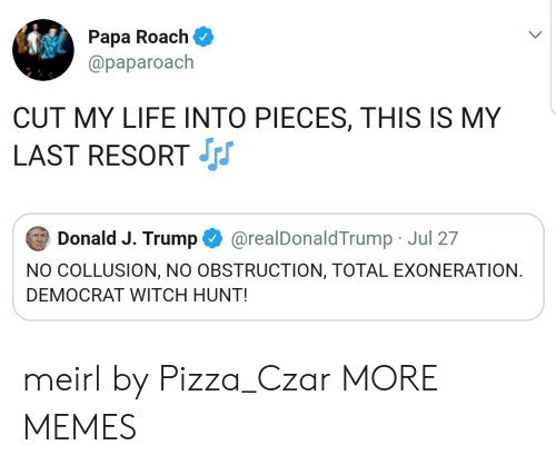 Dank, Life, and Memes: Papa Roach  @paparoach  CUT MY LIFE INTO PIECES, THIS IS MY  LAST RESORT  Donald J. Trump  @realDonaldTrump Jul 27  NO COLLUSION, NO OBSTRUCTION, TOTAL EXONERATION  DEMOCRAT WITCH HUNT! meirl by Pizza_Czar MORE MEMES