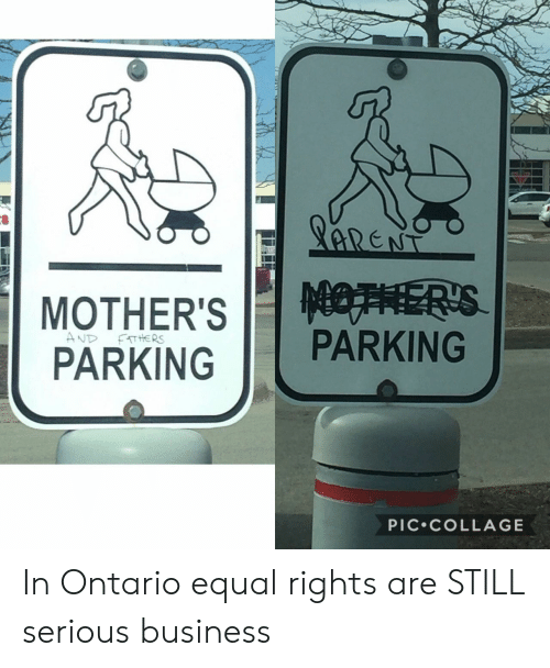 Business, Collage, and Still: PARKINGPARKING  PIC.COLLAGE In Ontario equal rights are STILL serious business