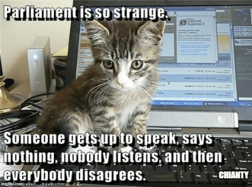 Says Nothing: Parliament is so strange.  temet  Explorer?  Someone gets up to speak, says  nothing, nobody listens, and then.  everybody disagrees.  CHIANTY  imgflip.com: HEEZRGERIUOM