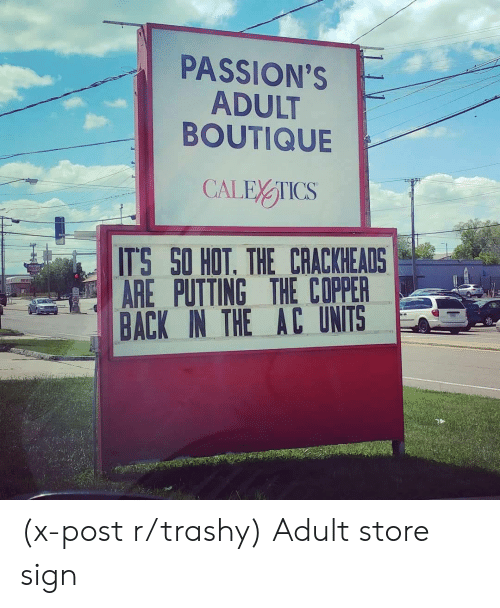 passions: PASSION'S  ADULT  BOUTIQUE  ITS SO HOT. THE CRACKHEADS  AREPUTTING THE COPPER  BACK IN THE AC UNITS (x-post r/trashy) Adult store sign