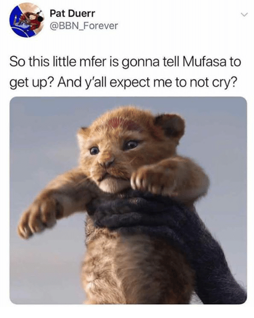 Dank, Mufasa, and Forever: Pat Duerr  @BBN_Forever  So this little mfer is gonna tell Mufasa to  get up? And y'all expect me to not cry?