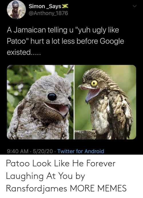 Forever: Patoo Look Like He Forever Laughing At You by Ransfordjames MORE MEMES