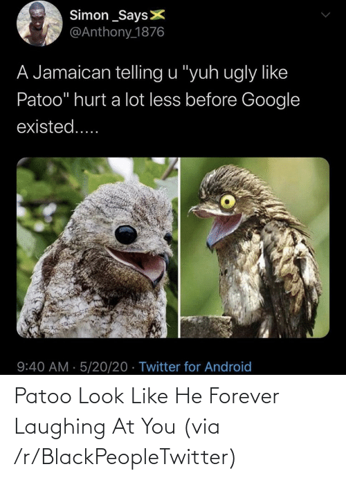 Forever: Patoo Look Like He Forever Laughing At You (via /r/BlackPeopleTwitter)