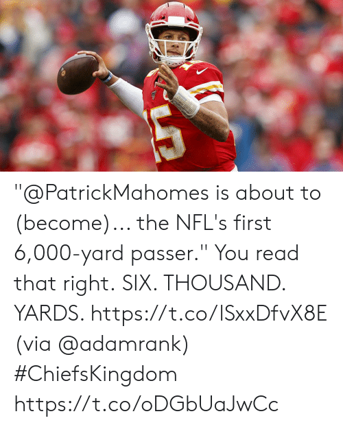 """Memes, 🤖, and Via: """"@PatrickMahomes is about to (become)... the NFL's first 6,000-yard passer.""""  You read that right. SIX. THOUSAND. YARDS. https://t.co/lSxxDfvX8E (via @adamrank) #ChiefsKingdom https://t.co/oDGbUaJwCc"""