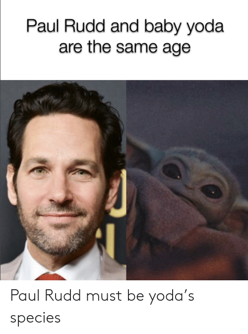 species: Paul Rudd and baby yoda  are the same age Paul Rudd must be yoda's species