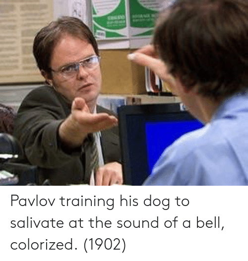 Dog, Sound, and Bell: Pavlov training his dog to salivate at the sound of a bell, colorized. (1902)