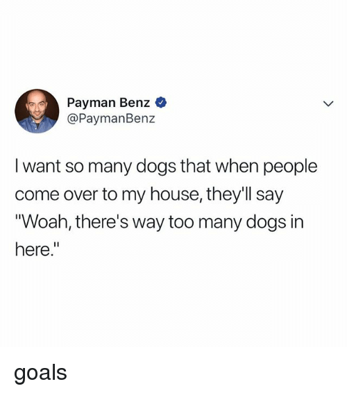 "benz: Payman Benz  @PaymanBenz  I want so many dogs that when people  come over to my house, they'll say  Woah, there's way too many dogs in  here."" goals"
