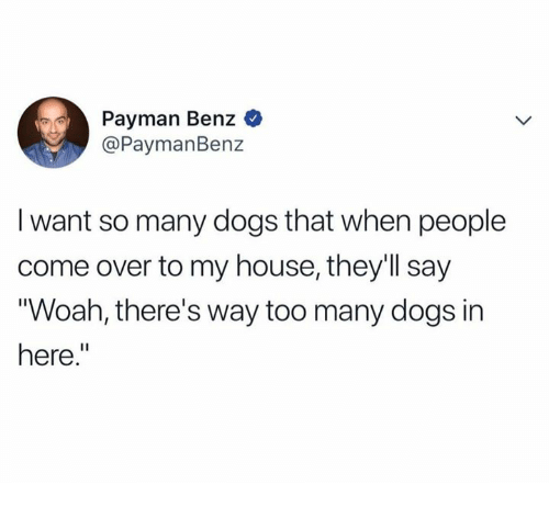 benz: Payman Benz  @PaymanBenz  I want so many dogs that when people  come over to my house, they'll say  Woah, there's way too many dogs in  here.""