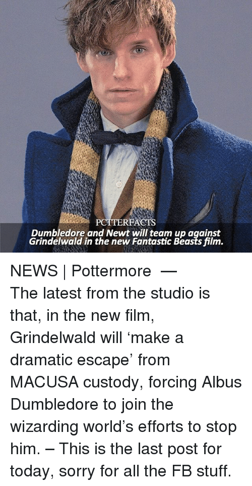 fantastic beasts: PCTTERFACTS  Dumbledore and Newt will team up against  Grindelwald in the new Fantastic Beasts film. NEWS | Pottermore ⠀⠀⠀⠀⠀⠀⠀⠀⠀⠀⠀⠀⠀ — The latest from the studio is that, in the new film, Grindelwald will 'make a dramatic escape' from MACUSA custody, forcing Albus Dumbledore to join the wizarding world's efforts to stop him. – This is the last post for today, sorry for all the FB stuff.