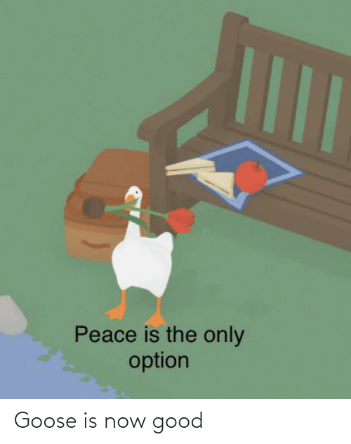 goose: Peace is the only  option Goose is now good