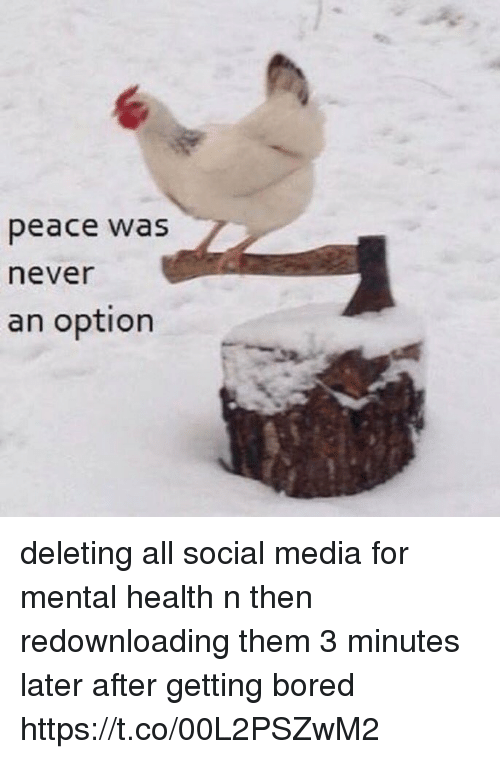 Bored, Social Media, and Girl Memes: peace was  never  an option deleting all social media for mental health n then redownloading them 3 minutes later after getting bored https://t.co/00L2PSZwM2