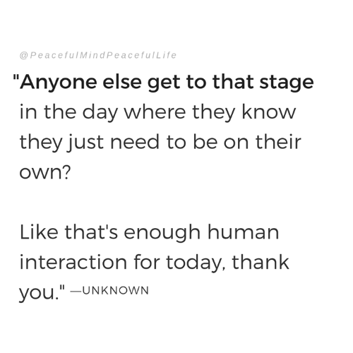 """Memes, Thank You, and Today: @PeacefulMindPeacefulLife  """"Anyone else get to that stage  in the day where they know  they just need to be on their  own?  Like that's enough human  interaction for today, thank  you.""""-UNKNOWN"""