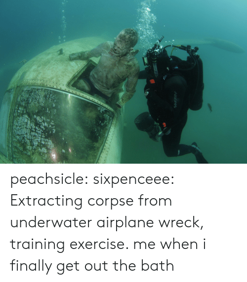 Sixpenceee: peachsicle:  sixpenceee:   Extracting corpse from underwater airplane wreck, training exercise.     me when i finally get out the bath