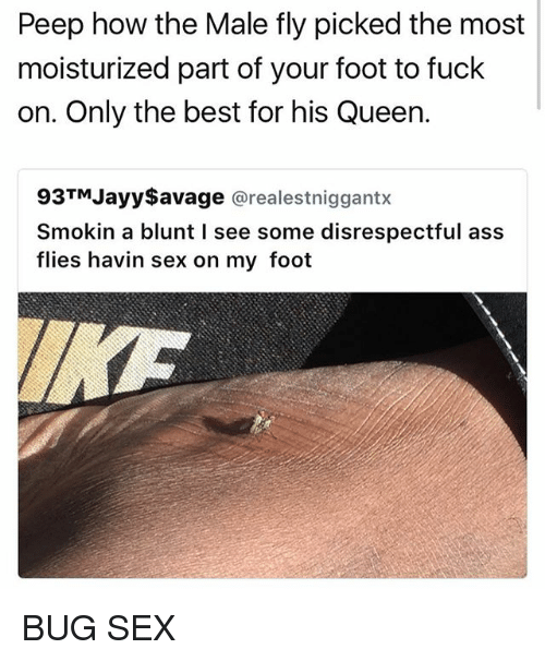bugging: Peep how the Male fly picked the most  moisturized part of your foot to fuck  on. Only the best for his Queen.  93TM Jayy$avage  arealestniggantx  Smokin a blunt l see some disrespectful ass  flies havin sex on my foot BUG SEX