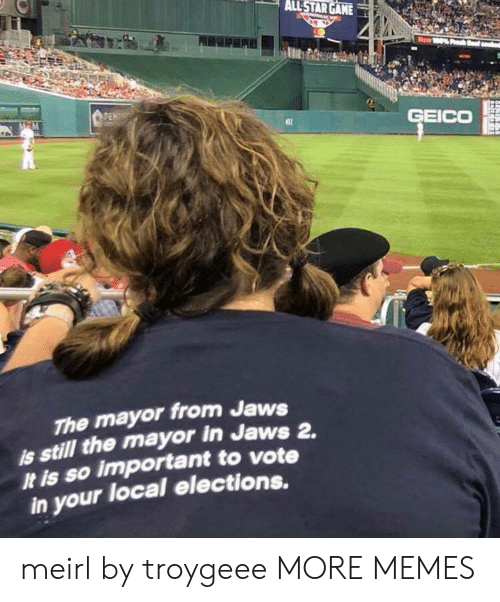 geico: PEN  GEICO  The mayor from Jaws  still the mayor in Jaws 2.  It is so important to vote  in your local elections. meirl by troygeee MORE MEMES