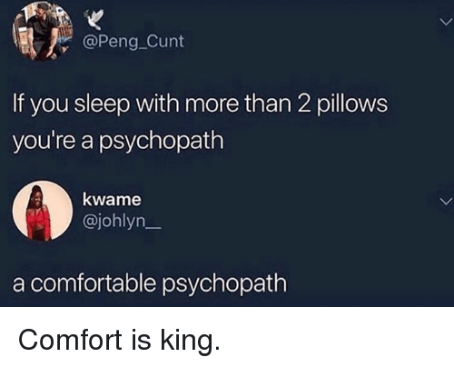 Comfortable, Dank, and Cunt: @Peng Cunt  If you sleep with more than 2 pillows  you're a psychopath  kwame  @johlyn_  a comfortable psychopath Comfort is king.