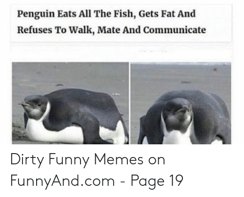 Dirty Funny Memes: Penguin Eats All The Fish, Gets Fat And  Refuses To Walk, Mate And Communicate Dirty Funny Memes on FunnyAnd.com - Page 19