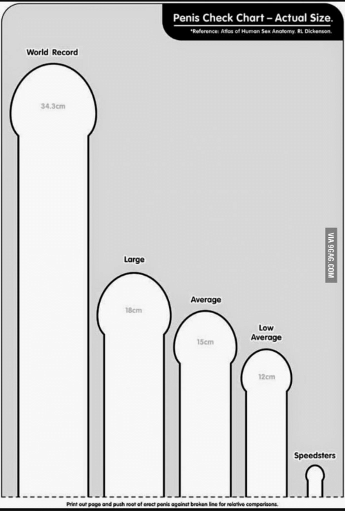 Illustrations of penis sizes